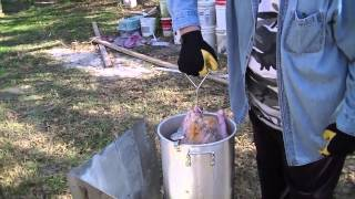Download How to Fry a Thanksgiving Turkey! Honey Butter Injected! Video