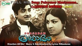 Download Pulayanar maniyamma   Malayalam Video Song   Prasadam Video