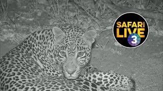 Download safariLIVE on SABC 3 S2 - Episode 9 Video