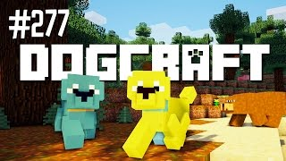 Download POODLES IN PERIL - DOGCRAFT (EP.277) Video