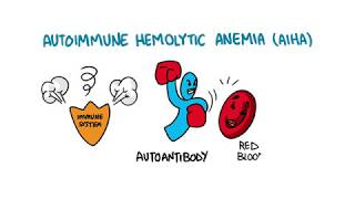 Download Autoimmune Hemolytic Anemia Video