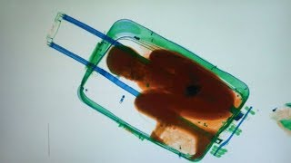Download TSA Testing 3D Scanners to Speed up Security Line Video