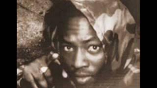 Download Wayne Smith - Under Me Sleng Teng Video
