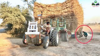 Download Tractor Fail | Ford & Belarus Fail to Pull out Heavy loaded Trailer 🔥🔥 Video