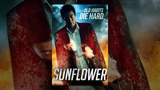 Download Sunflower Video