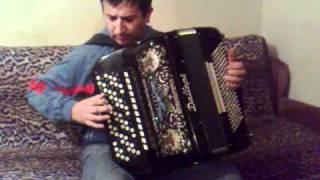 Download BOJAN NESIC - TIGAR KOLO Video