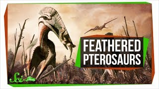 Download Feathered Reptiles Ruled Earth's Skies... Twice! | SciShow News Video