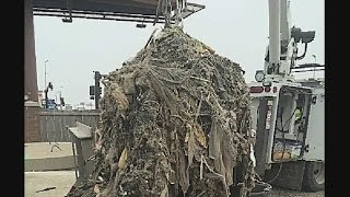 Download 'Flushable' Wet Wipes Wreaking Havoc On Sewer Systems Video