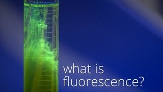 Download What is Fluorescence? Video