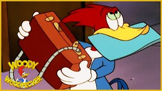 Download Woody Woodpecker Show | Spy-Guy | 1 Hour Woody Woodpecker Compilation | Cartoons For Children Video