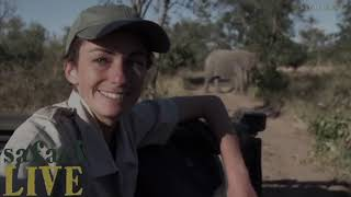 Download Happy Trails to Tayla at Safari Live from her Wild Pack Friends! Video