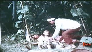 Download Phim Hài Việt Nam Cũ Hay Nhất Xem Đi Xem Lại Vẫn Không Thấy Chán !!! Video