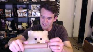 Download Loot Crate and Loot Pets Unboxing - April QUEST Video