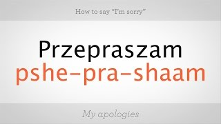 Download How to Say ″I'm Sorry″ in Polish | Polish Lessons Video