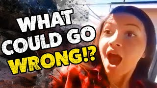 Download What Could Go Wrong? #20 | Funny Weekly Videos | TBF 2019 Video