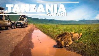 Download Tanzania Trip - Ultimate Safari HD [GoPro] Video