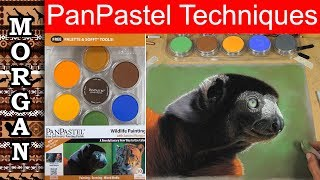 Download Pan Pastels Techniques Tutorial : Jason Morgan Wildlife Art Video