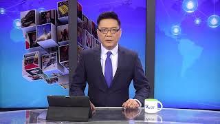 Download Quan Hệ Việt Đức Tiếp Tục Xấu Video