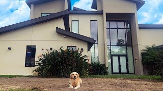 Download We DESTROYED the front yard.. (Super Cooper Sunday #161) Video
