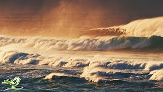 Download Calm Piano Music & Ocean Waves - Relaxing Music, Sleep Music, Meditation Music Video