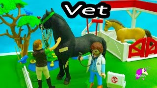 Download Owner Surprised Mare Has Foal - A Day with Playmobil Horse Vet - Video Video
