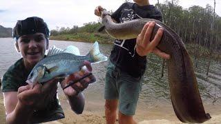 Download Kayak Bass Fishing - And Catching HUGE FISH! HD Video