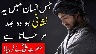 Download Jis Insan Mein Ye Nishani Ho Wo Jaldi Dunya Se Chala Jata Hai | Hazart Ali (R.A) Ka Farman Video