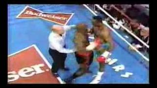Download Hearns vs Barkley Rematch March 1992-rounds one and two Video