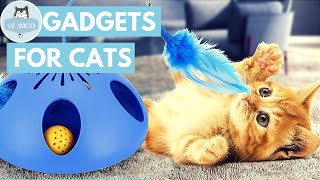 Download 10 Amazing Gadgets For Cats Video