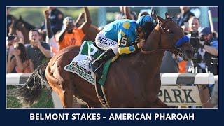 Download American Pharoah wins the Triple Crown - 2015 Belmont Stakes (G1) Video