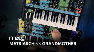 Download Moog Matriarch vs Moog Grandmother 🎹 | Comparison by Daniel Fisher Video