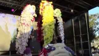 Download DONG THANH ALLIANCE- LION DANCERS -AT CABRAMATTA MOON FESTIVAL 27/9/2015 Video