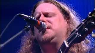 Download Gov't Mule - Banks Of The Deep End Video