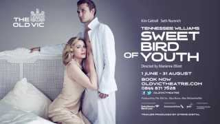 Download Sweet Bird Of Youth TRAILER Video