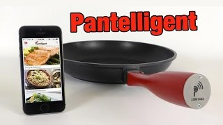 Download Pantelligent - PRODUCT REVIEW Video