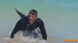 Download SHARK PRANK!!! Fort Lauderdale Beach Video