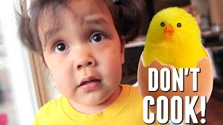 Download DON'T COOK THE EGGS! - May 11, 2017 - ItsJudysLife Vlogs Video