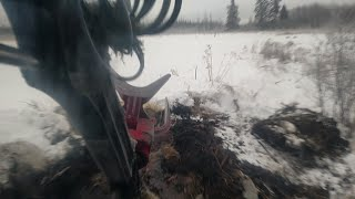 Download Beaver Dam Vs Timbco Video