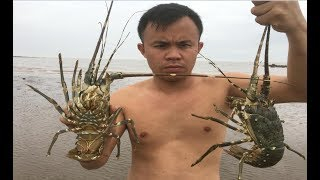 Download Primitive Technology with Survival Skills looking for food lobster Video
