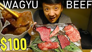 Download All You Can Eat A5 WAGYU BEEF in Tokyo Japan! Video