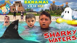 Download BAHAMAS SHARK HOTEL is Back! (Funnel Vision @ Atlantis 2018) Video