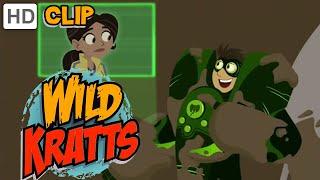 Download Wild Kratts - Stuck in the Mud Video