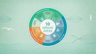 Download Sustainable fisheries strategy Video