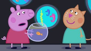 Download Peppa Pig English Episodes | Peppa goes to the Aquarium | Cartoons for Children Video