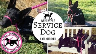 Download Why I have a service dog 😱| I'm half blind 🤒 | Katilyn Boyer Video