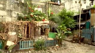 Download Tunay na Buhay: Ang hidden talent ng komedyanteng Palito! Video