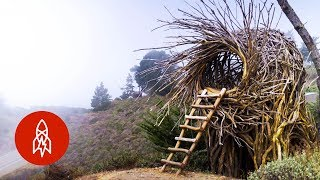 Download Meet the Man Building Human-Sized Nests Video