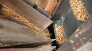 Download pellettatrice pellet mill Pelletieranlage pelletpresse presse a granules de bois Video