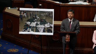 Download Migrant Kids Crying Audio Played on House Floor Video
