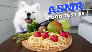 Download ASMR Dog Reviewing Different Types of Food #5 I MAYASMR Video